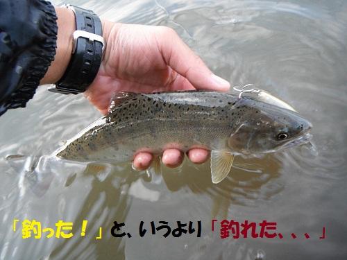 120601_PIC001.jpg