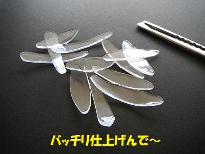 120603_PIC003.jpg