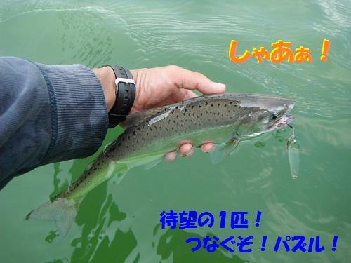 120609_PIC010.jpg