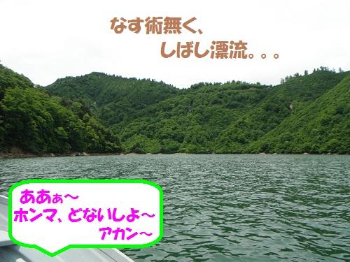 120625_PIC003.jpg
