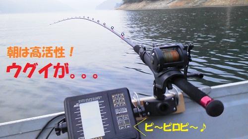 120801_PIC008.jpg