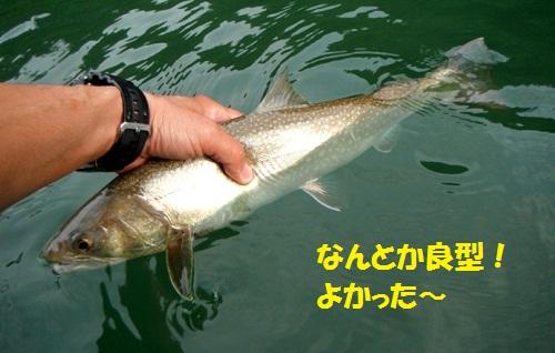 120801_PIC011.jpg
