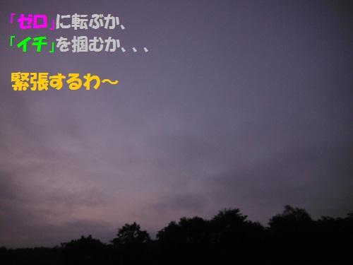 120908_PIC002.jpg