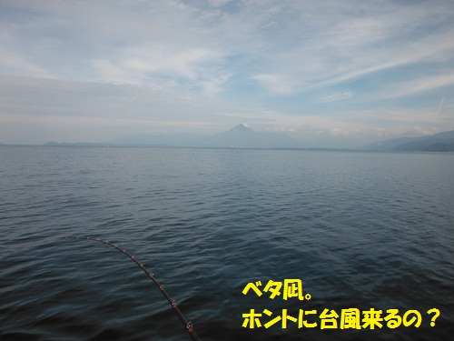 121003_PIC003.jpg