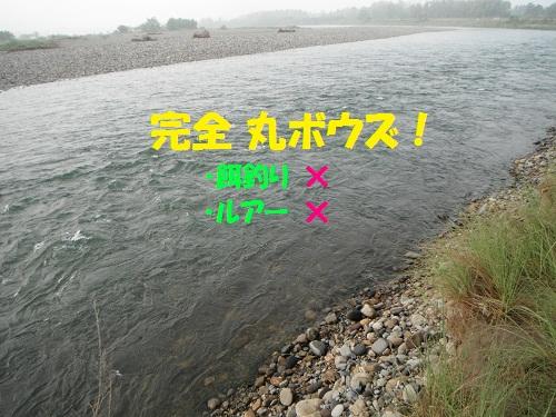120526_PIC016