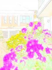 130108blogb.jpg