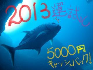 130110bloge.jpg