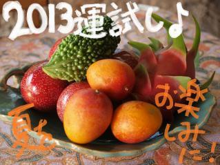 130110blogr.jpg