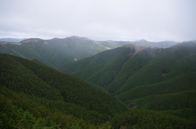 14深い緑の山々