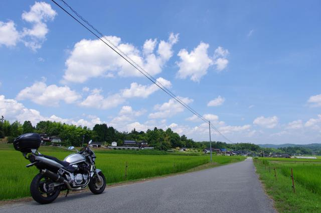 12田園風景と夏の空