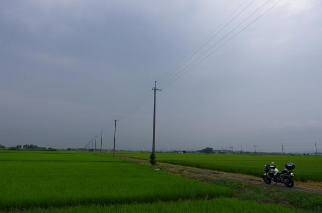 2 田園とBandit