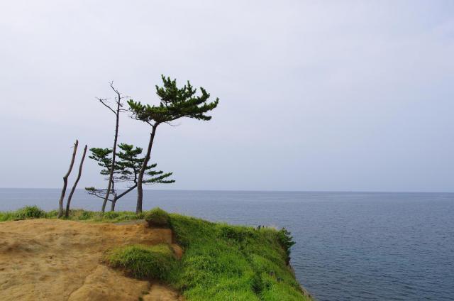 12加佐ノ岬