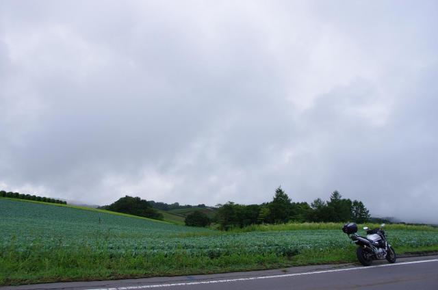 7広大な高原野菜畑が広がる