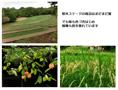 201209220002.png