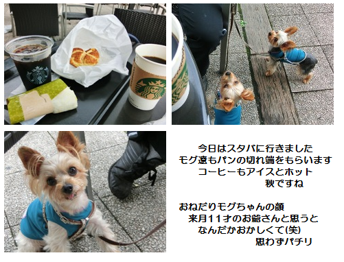 201209220003.png