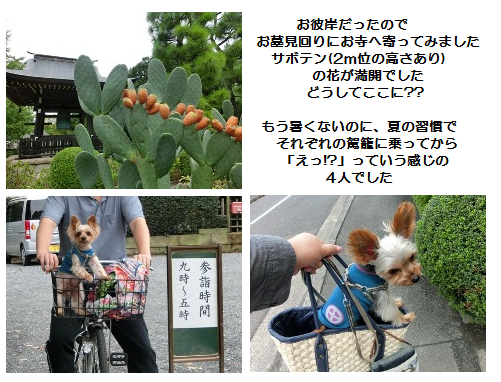 201209220004.png