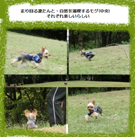 20120929001.png