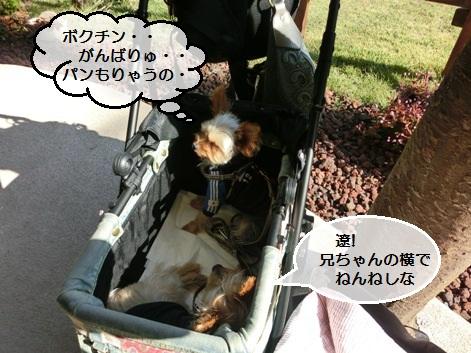 201210130001_20121016155808.jpg