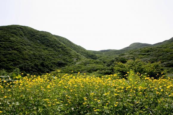焼石岳1 m