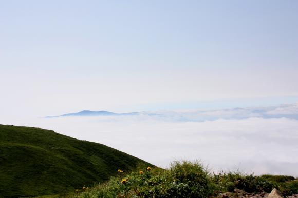 焼石山頂4