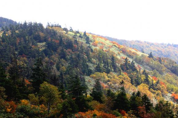 石森山頂3