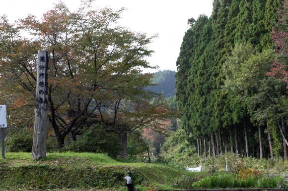 毘沙門の森1