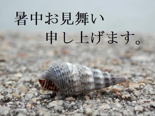 P7220002+-+繧ウ繝斐・_convert_20120722164046 - コピー
