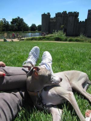 201207Bodiam Castle 028