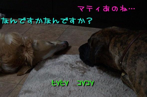 201305 11-066