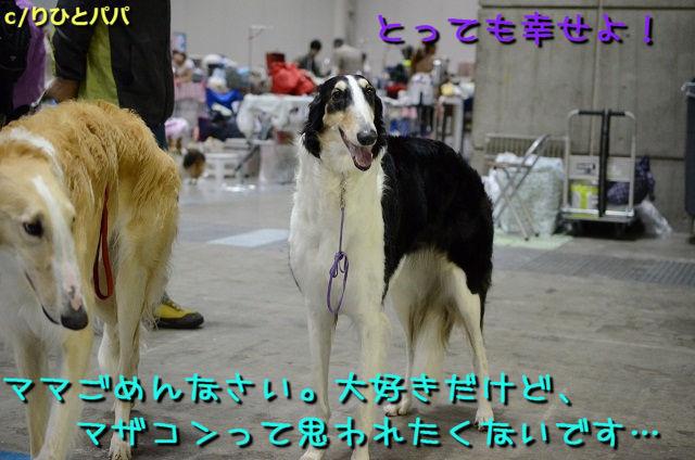 DSC_2044.jpg