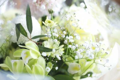 DSC_0010小_convert_20120522220118