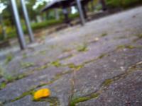 PICT0120小_convert_20121118005419