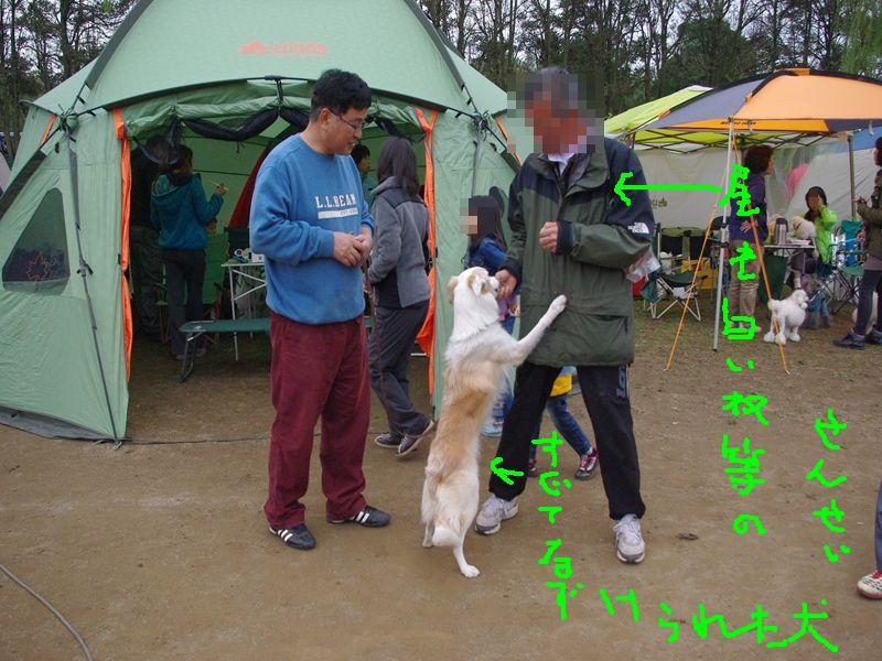 IMGP0346_R_20121114130606.jpg