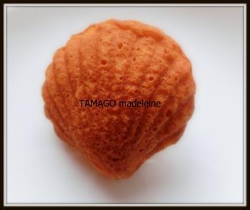 卵マドレーヌ