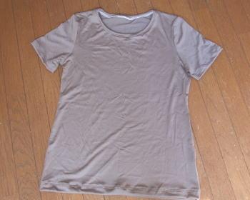 Tシャツ大人1
