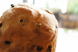 20120523-20 raisin bread (800x532)