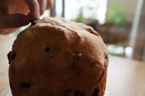 20120523-17 raisin bread (800x532)