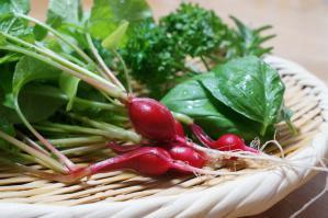 20120530-11 vegetables (800x532)
