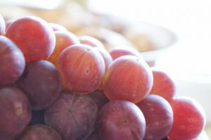 20120917-07 grapes (640x425)