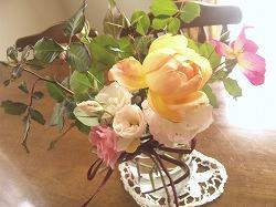 2012年最後のバラたち