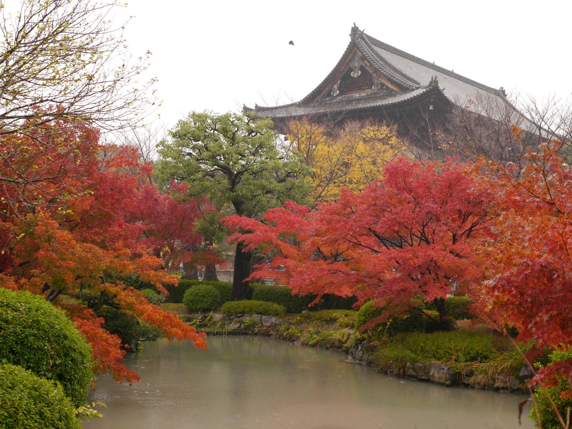 東寺池_convert_20121129203521