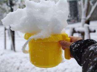 近所の雪景色03