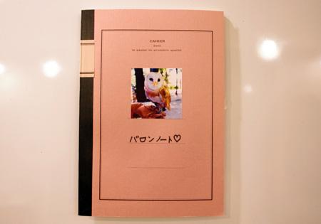 フクロウ日記
