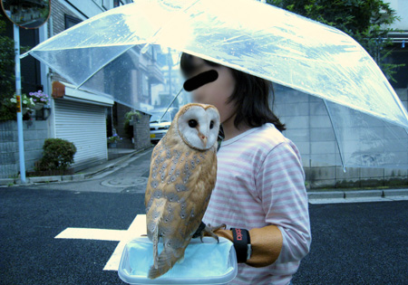 子供と一緒の傘でおでかけ