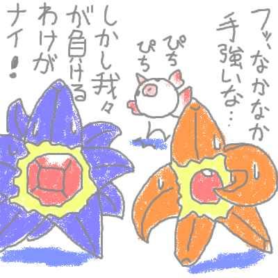 hanada_57.jpg