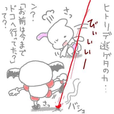 kogane_29.jpg
