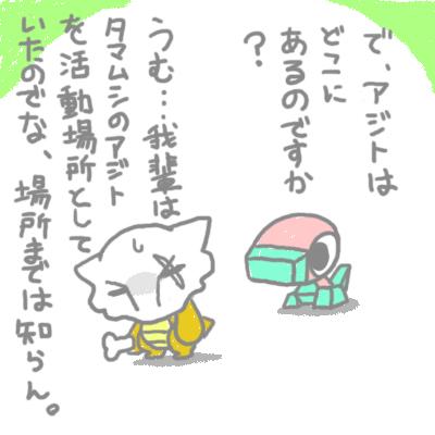 mewtwo_tokiwa_12.jpg