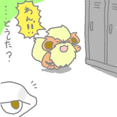 mewtwo_tokiwa_166.jpg