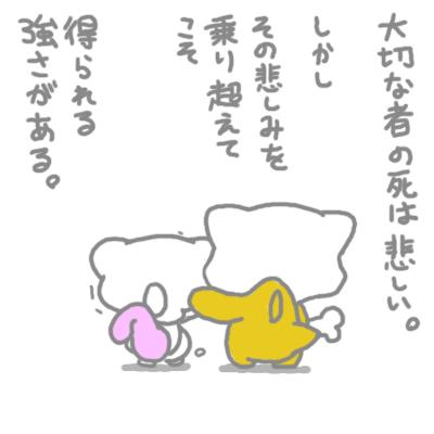 mewtwo_tokiwa_201.jpg