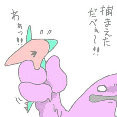 seki_102.jpg